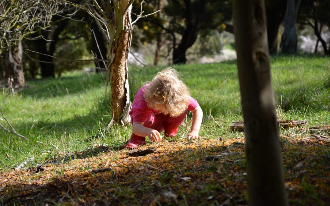 FREE Nature Scavenger Hunts