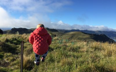 9 Benefits of Wild Play in a Cotton Wool World