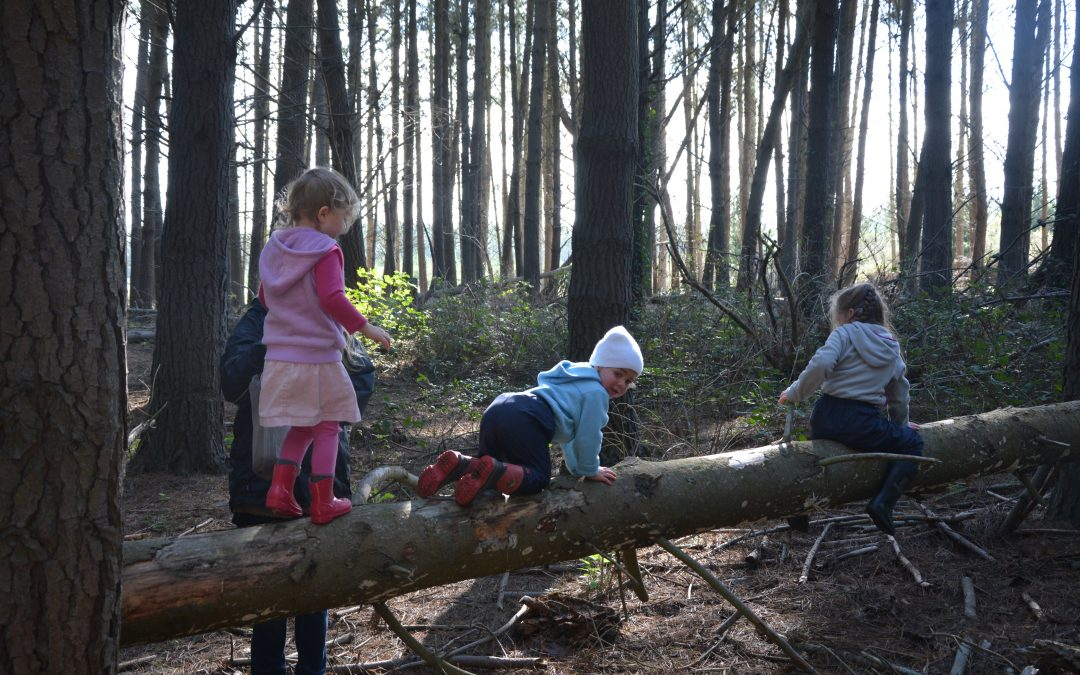 Parent Perspective: How to be a Nature Play Advocate